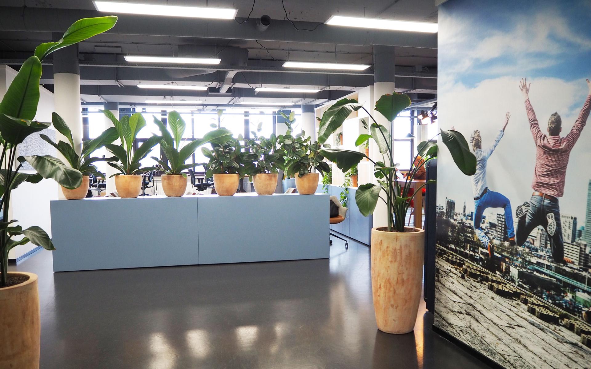 entree-kantoor-muurprint-werkgeluk-welkom
